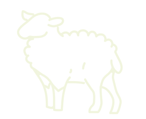 carne orgánica de cordero saludable Nana